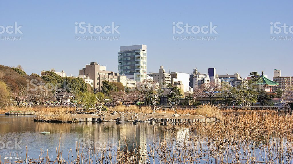 Ueno park, Tokyo, Japan stock photo