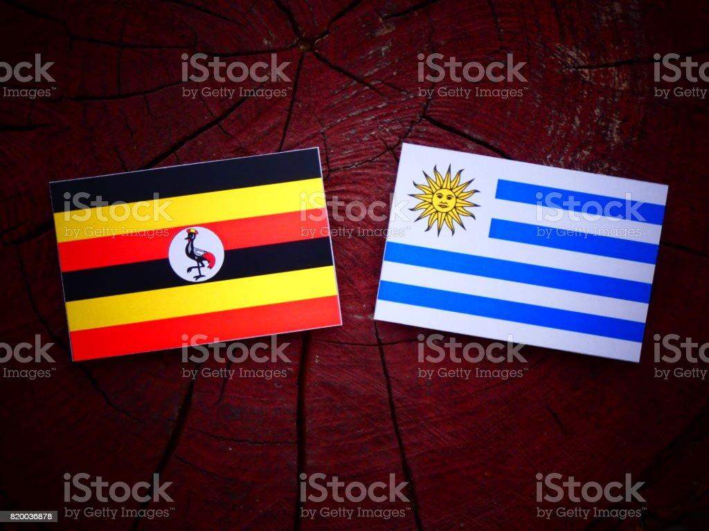 Uganda flag with Uruguaian flag on a tree stump isolated stock photo