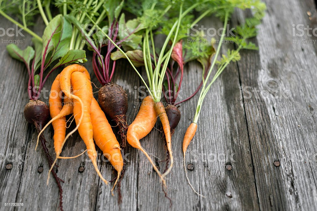 Ugly carrot and beetroot stock photo
