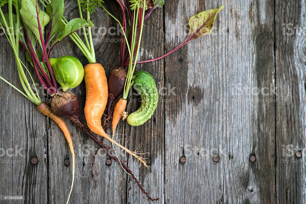 Ugly carrot, beetroot and cucumber stock photo