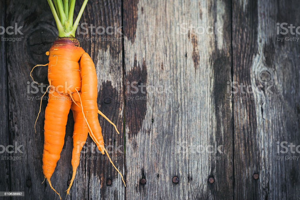 Ugly carrot on barn wood stock photo