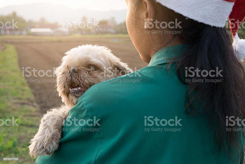 Ugly dog but owner girl give love and very happy. stock photo