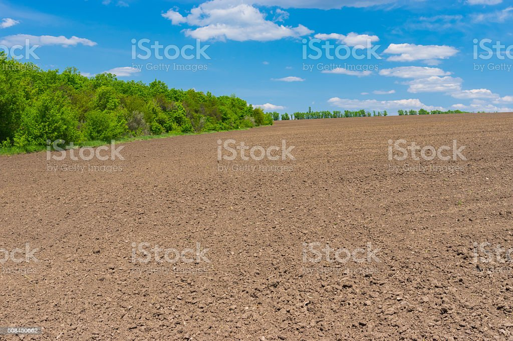 Ukrainian agricultural field before young crops come up stock photo