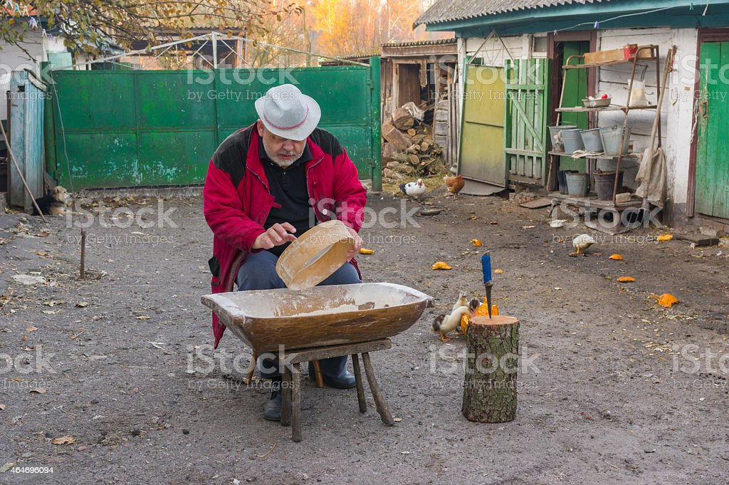 Ukrainian peasant doing daily work stock photo