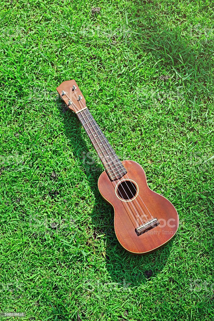 Ukulele on field of grass stock photo