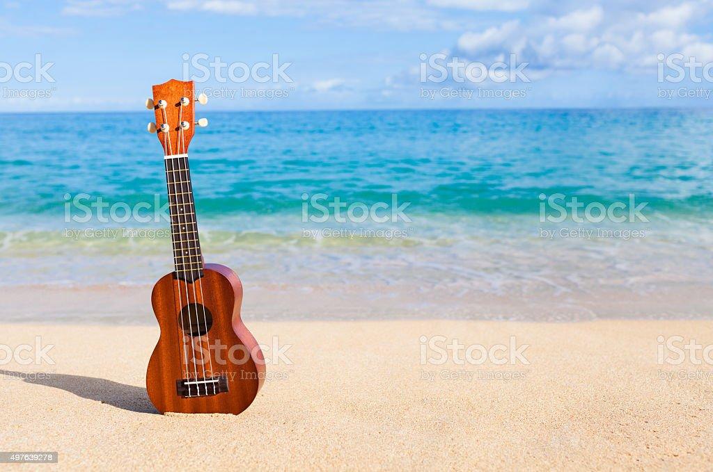 Ukulele on the beach in Hawaii stock photo