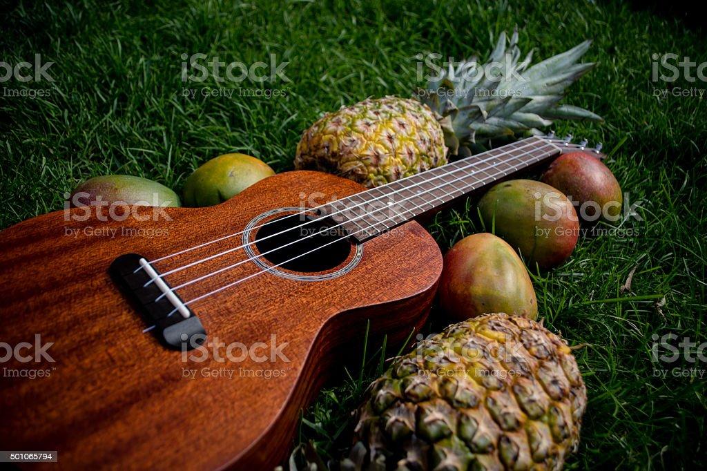 Ukulele with pinapple and mango on grass stock photo