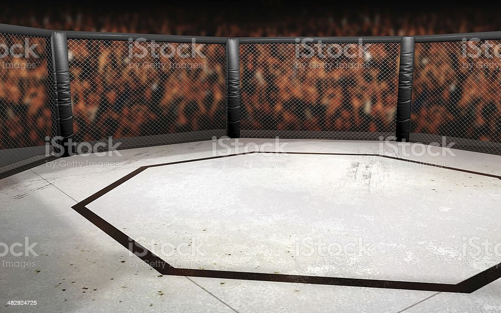 Ultimate Fighting Octagon Illustration royalty-free stock photo