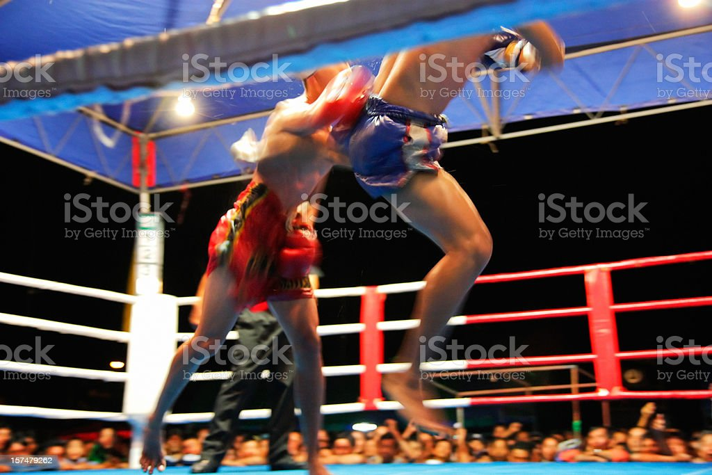 Ultimate fighting stock photo