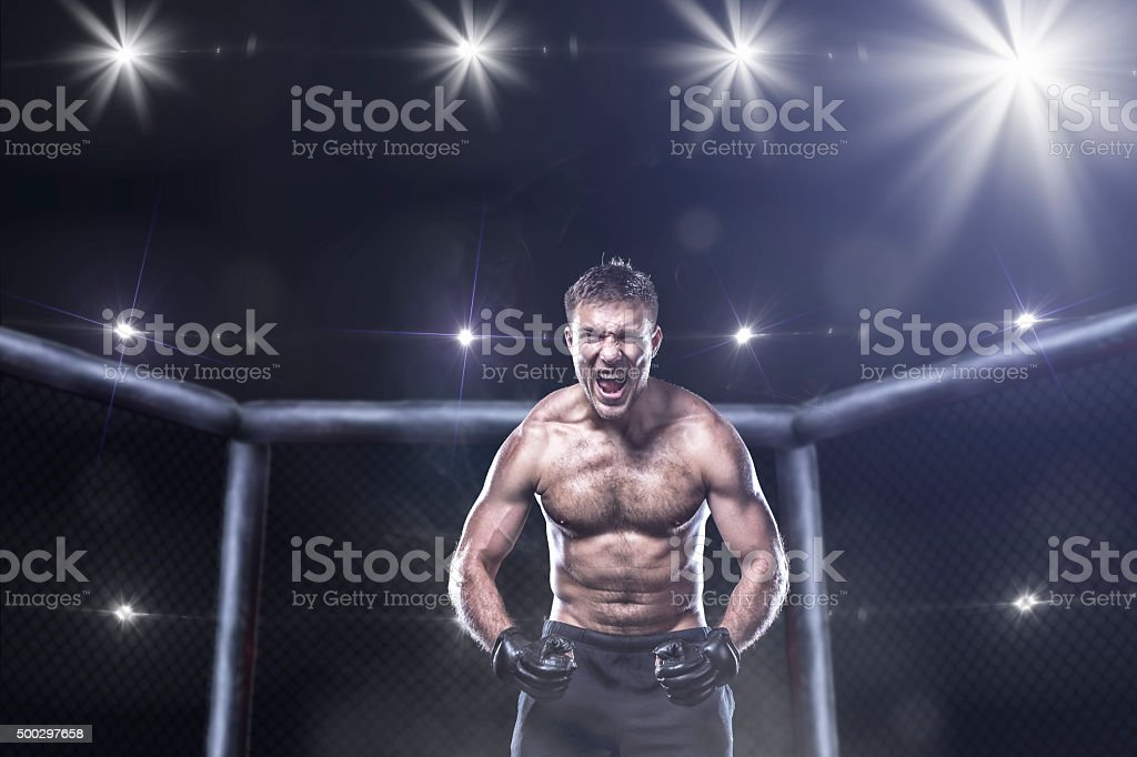ultimate mma fighter in a octagon cage stock photo