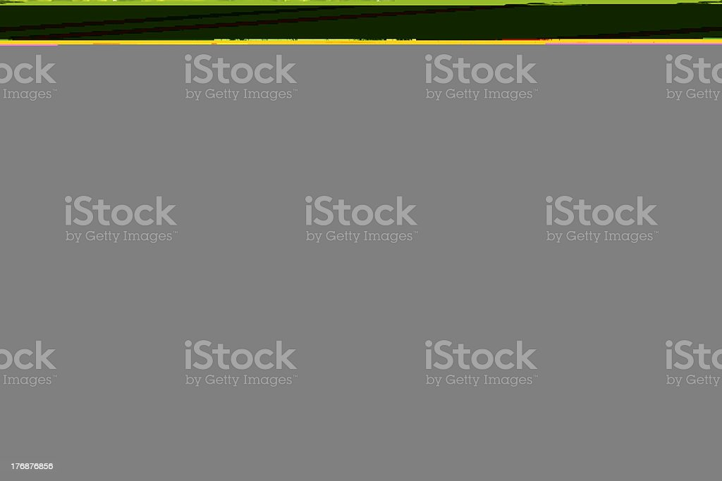 ulva alga background stock photo