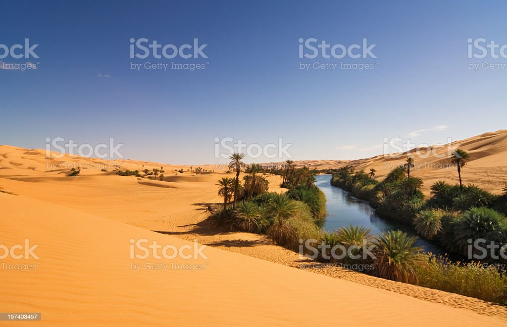 Um el Ma Oasis , Mandara lake , Libyan Sahara Desert, Africa stock photo