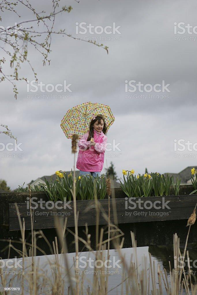 Umbrella 0003 royalty-free stock photo