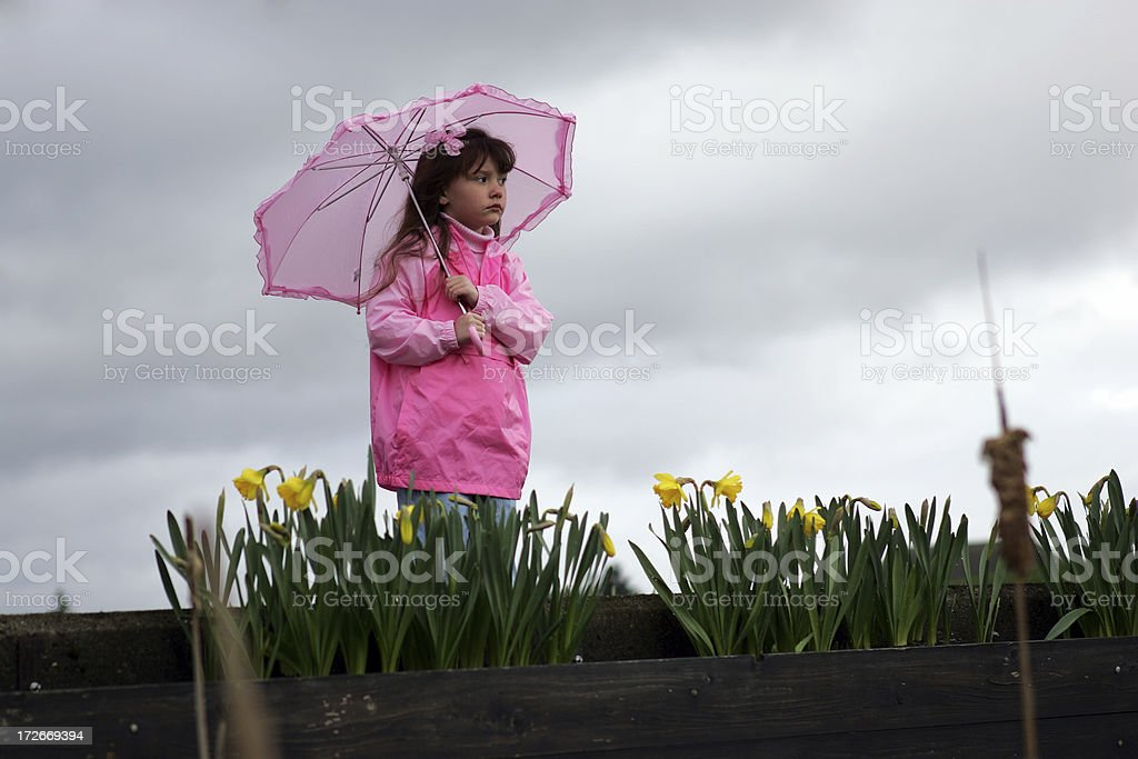 Umbrella 0010 royalty-free stock photo