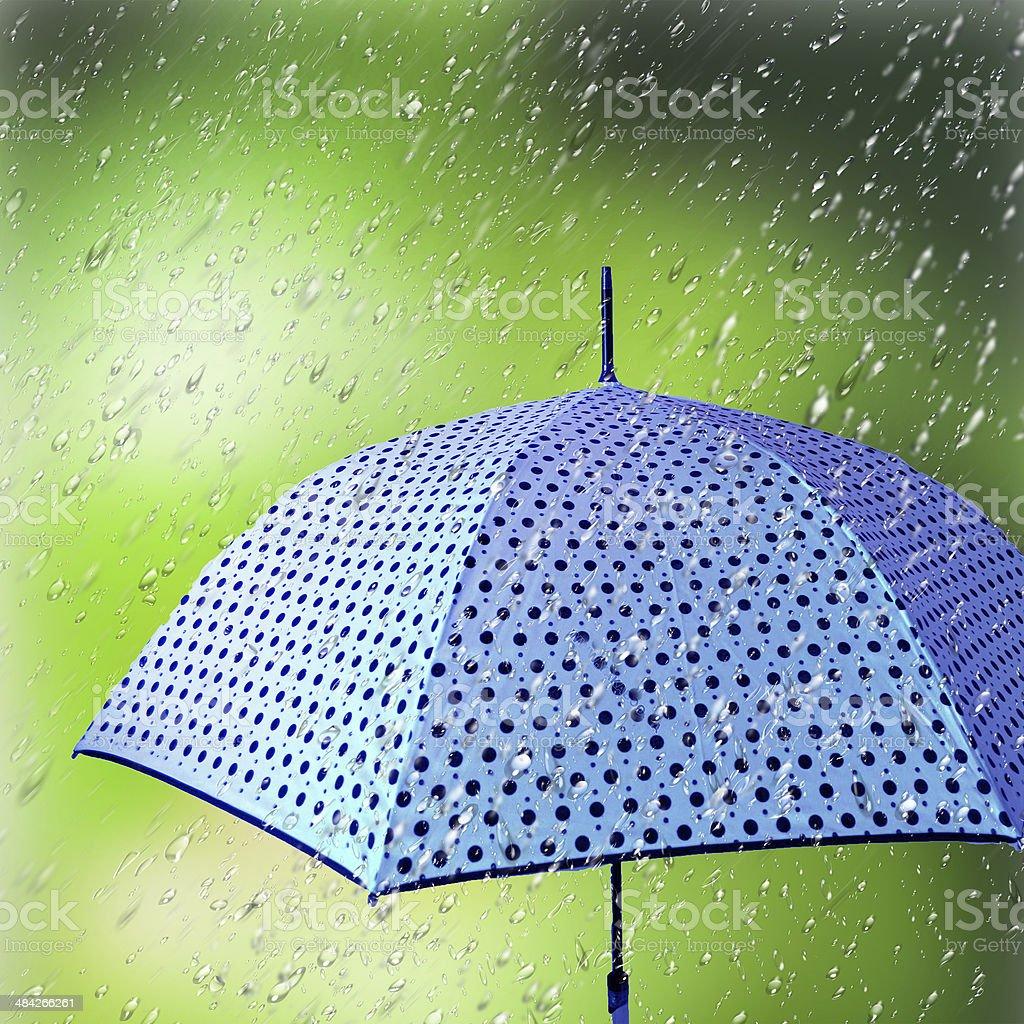 Umbrella in the rain. stock photo