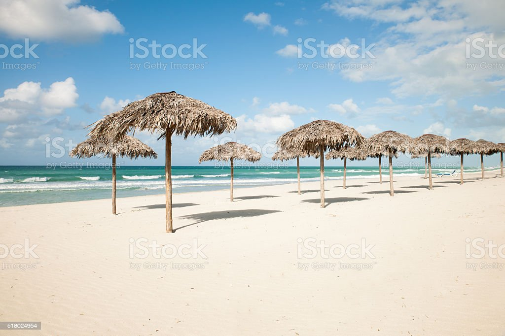 Umbrellas from royal palm leaves, parasole on Varadero sandy beach stock photo
