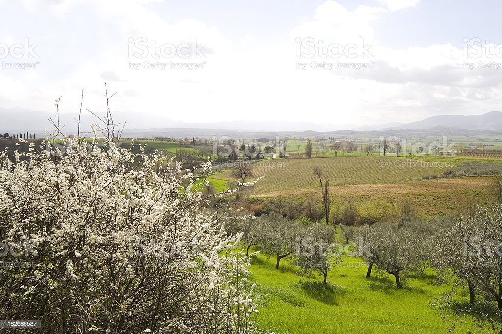 Umbrian Country Landscape in Spring Season royalty-free stock photo
