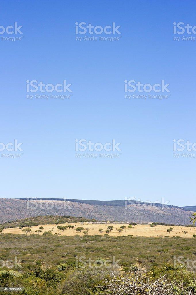 uMgungundlovu in KwaZulu-Natal, South Africa stock photo