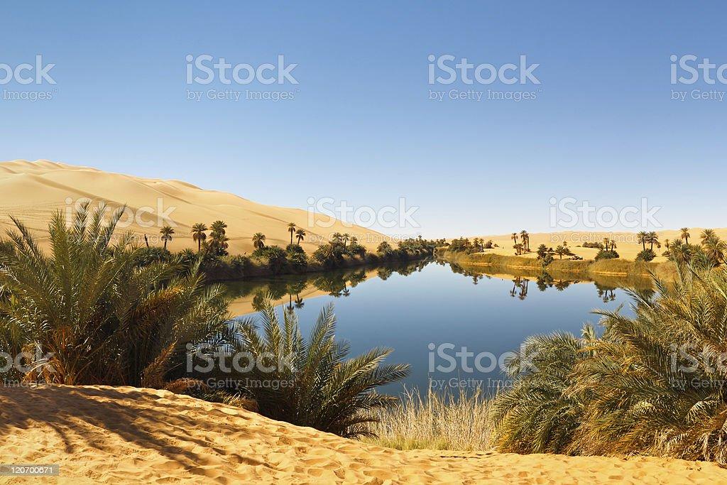 Umm al-Ma Lake - Desert Oasis, Sahara, Libya stock photo