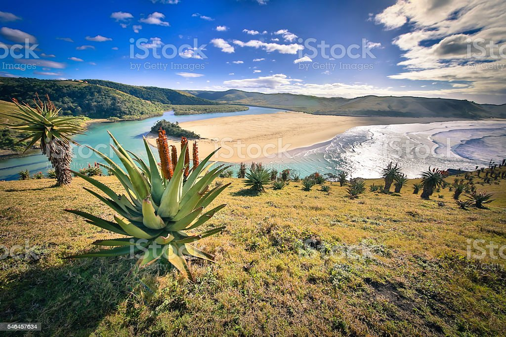 Umtata River mouth stock photo