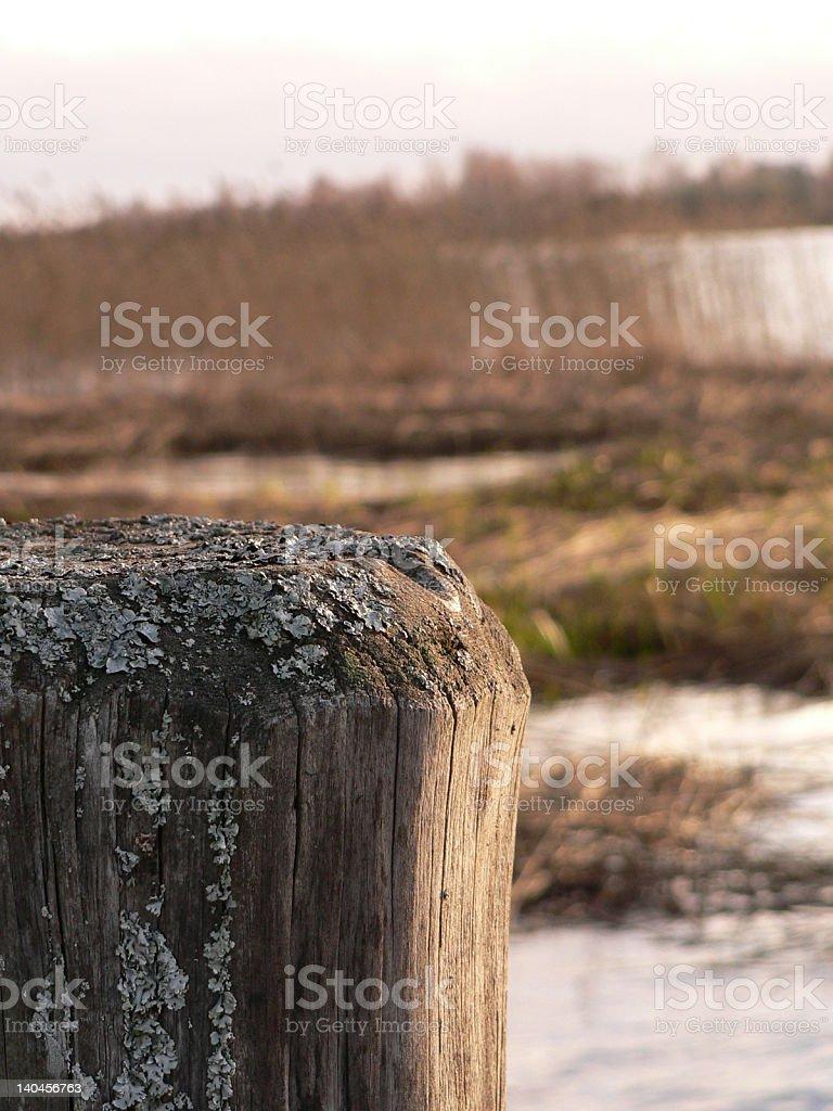 Un poteau au bord de l'eau royalty-free stock photo