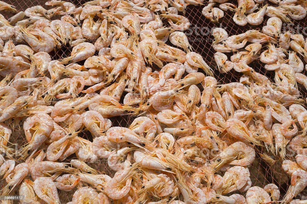 หun rdied seafood, Dried Shrimps for making Asian cuisine stock photo