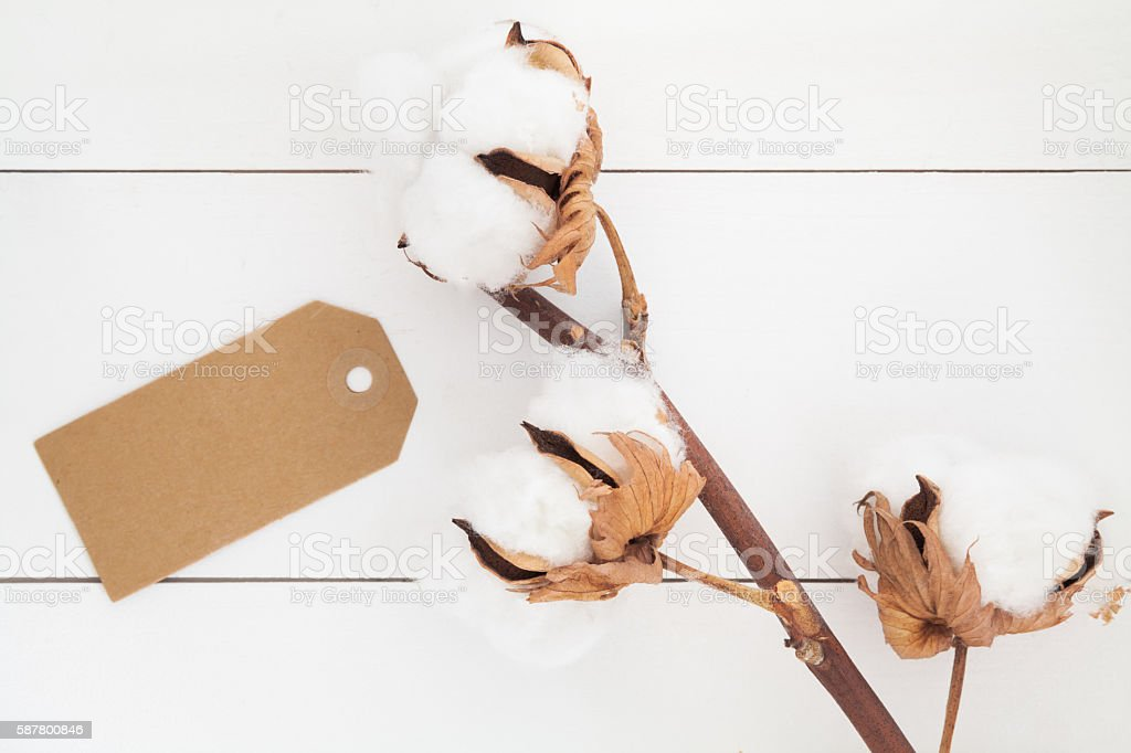 Unbleached gift tag stock photo