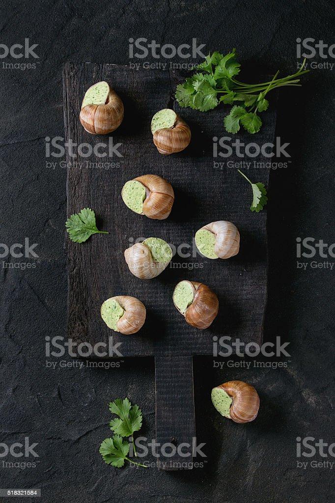 Uncooked Escargots de Bourgogne snails stock photo