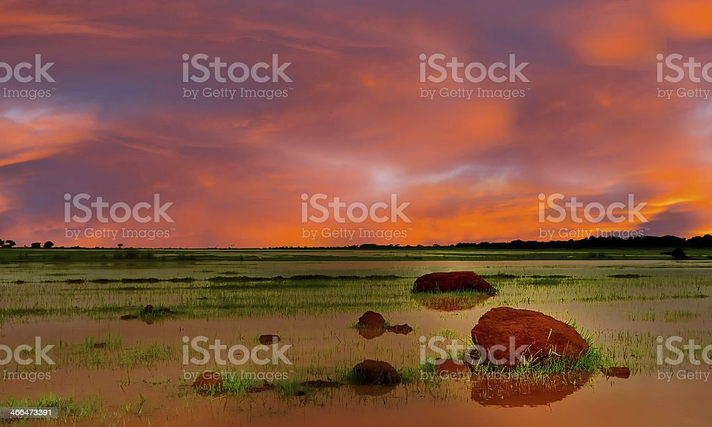 Under a African Sky stock photo