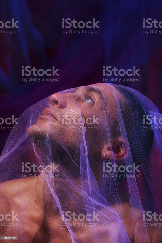 Under a Veil royalty-free stock photo