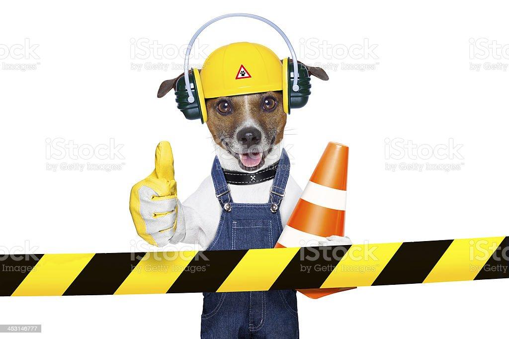 under construction dog royalty-free stock photo
