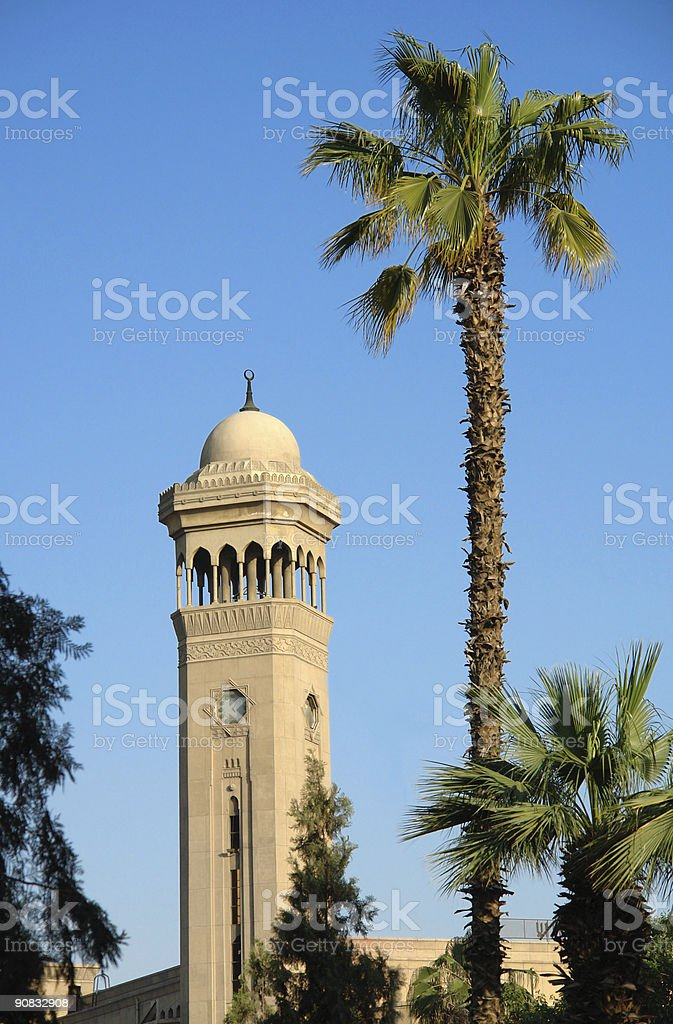 Under palm tower royalty-free stock photo