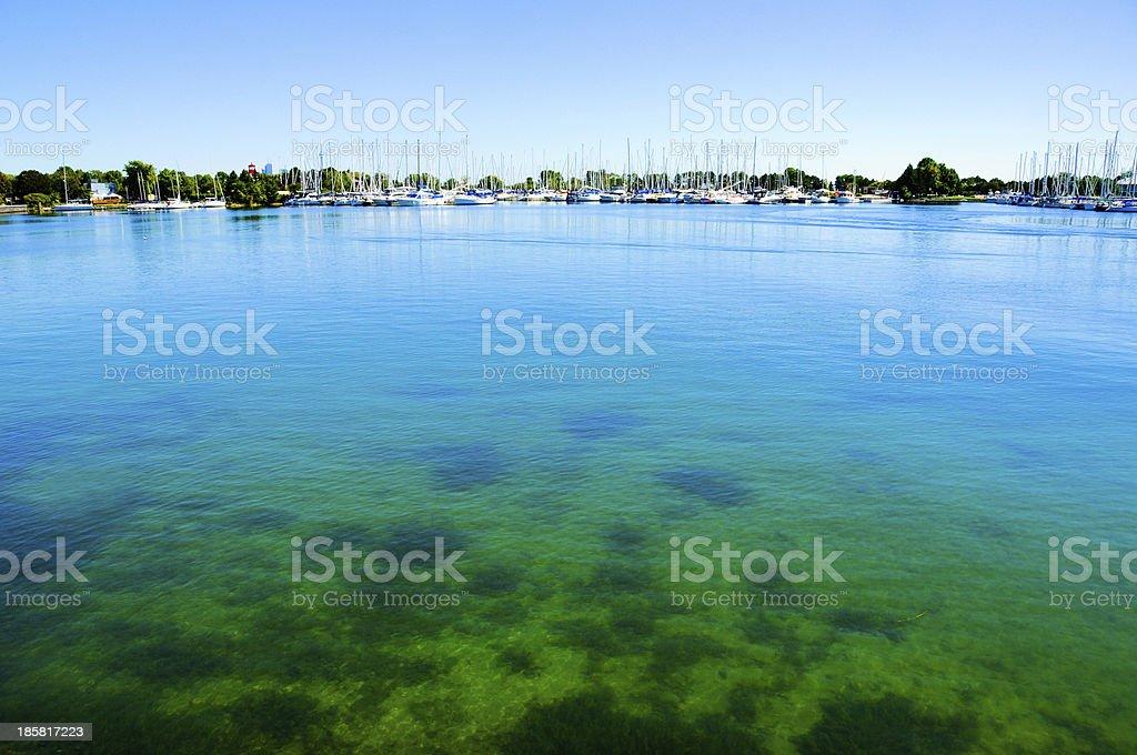 under sea royalty-free stock photo