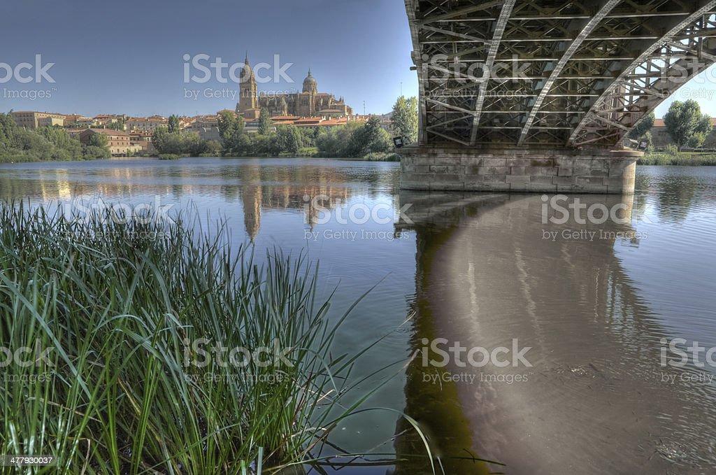 Under the Bridge of Sanchez Fabres in Salamanca stock photo