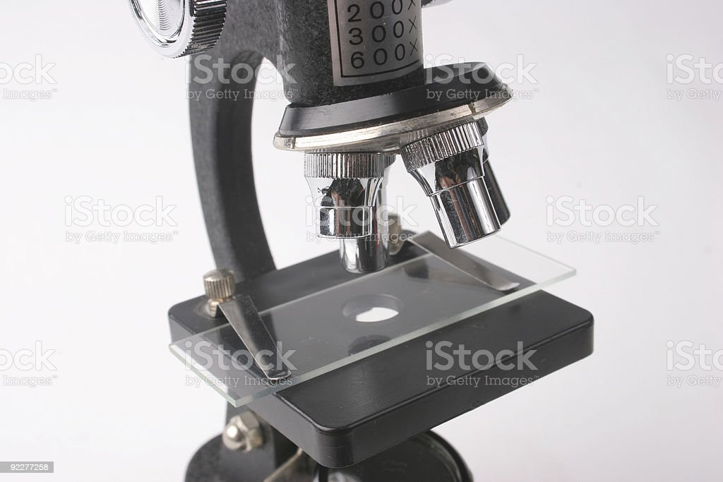 Under the microscope royalty-free stock photo