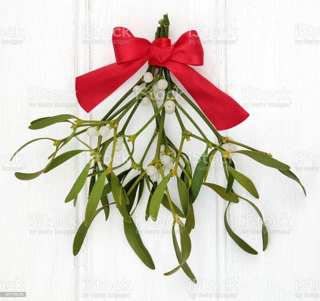 Under the Mistletoe stock photo
