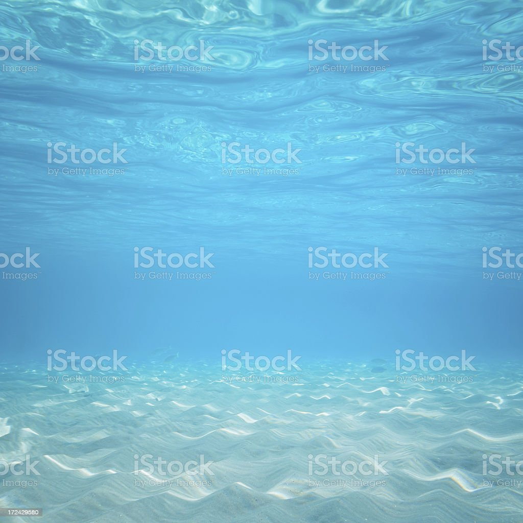 Under the sea stock photo