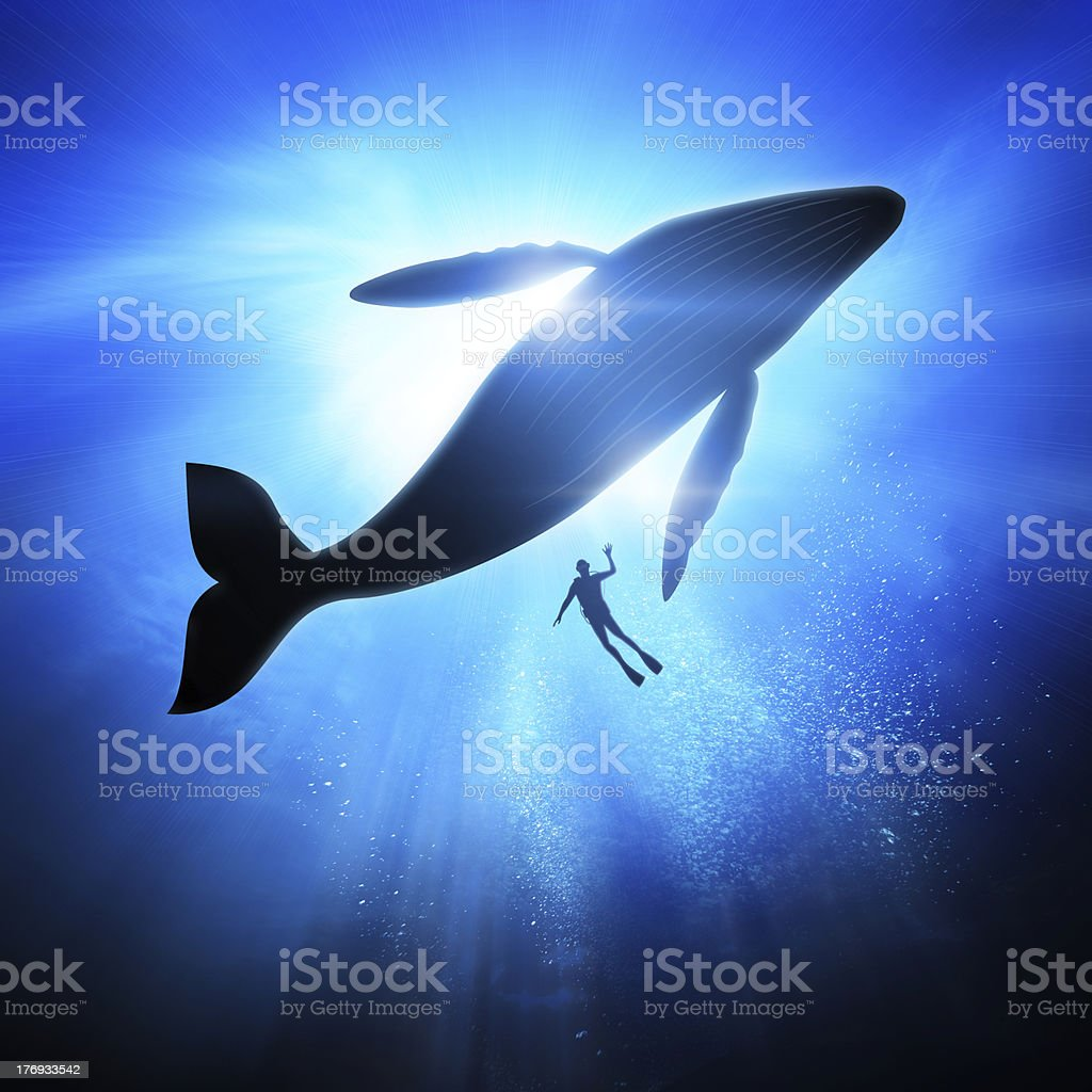 Under The Waves stock photo