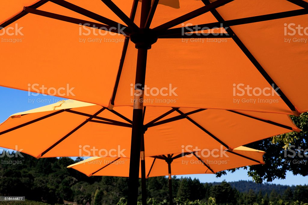 Under The Yellow Sun Umbrellas stock photo
