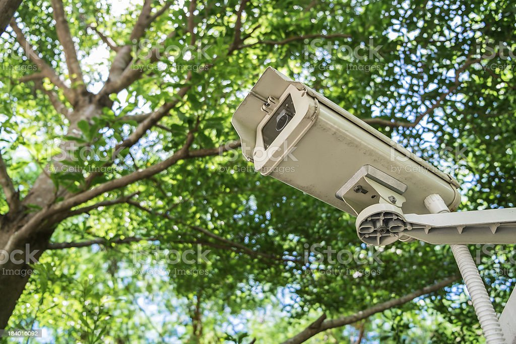CCTV under trees in the park royalty-free stock photo