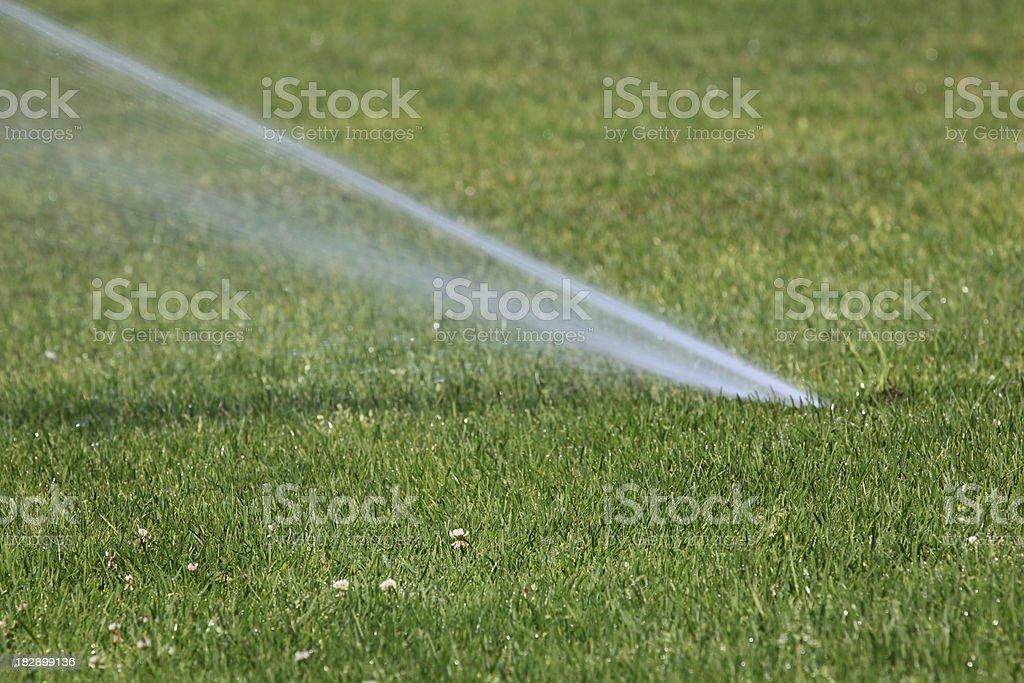 Underground Sprinkler stock photo
