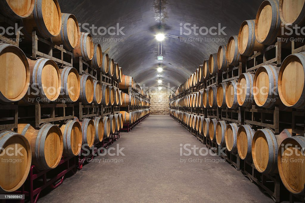 Underground Wine Cellar stock photo