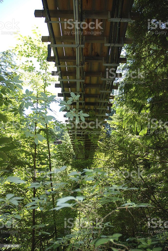Underneath the Capilano Suspension Bridge, British Columbia stock photo