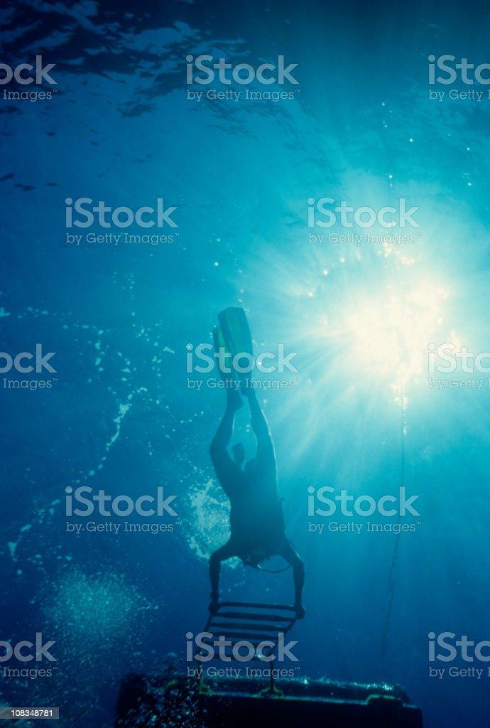 Underwater Adventure royalty-free stock photo