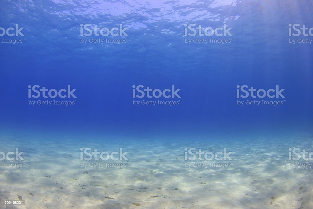 Underwater background in sea stock photo