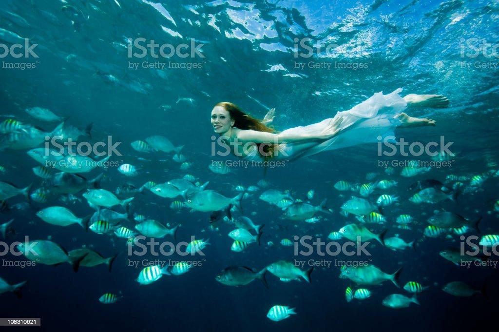 Underwater Beauty royalty-free stock photo