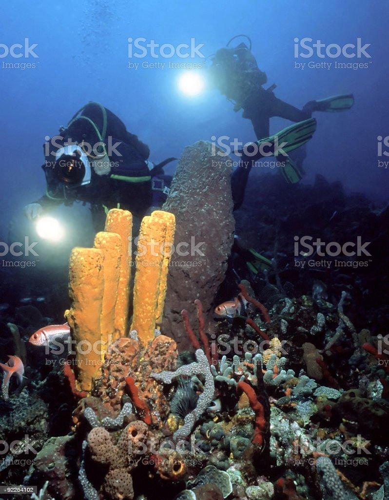 Appareil photo aquatique opérateurs photo libre de droits