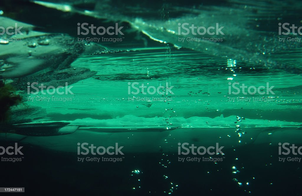 Underwater diving in winter stock photo