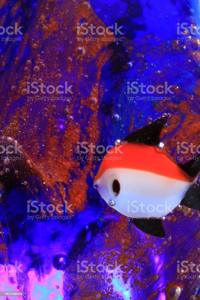 Underwater Fish in Glass royalty-free stock photo