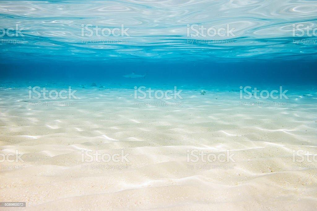 Underwater lagoon backround stock photo
